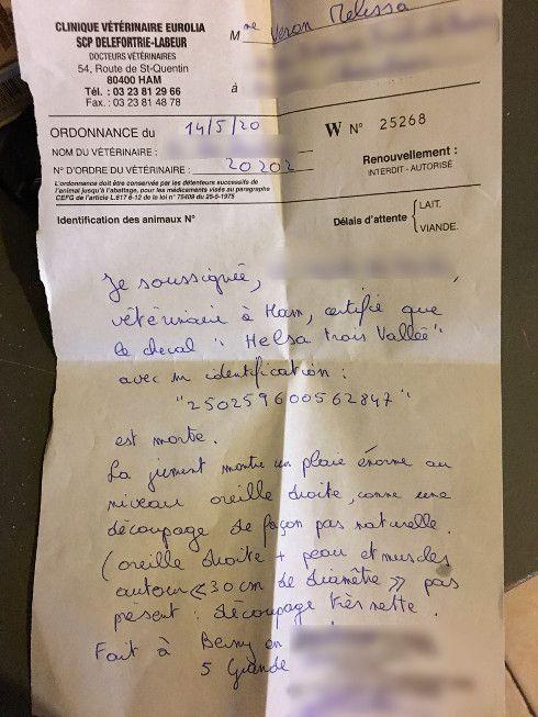 Certificat de décès d'Helsa Trois Vallées, établi par la vétérinaire le 14 mai 2020.