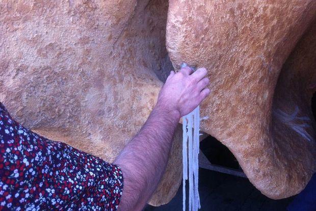 Même les sécrétions calcaires sont reproduites en résine.