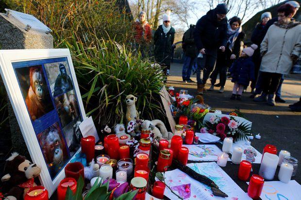 Des quidams émus par le drame survenu au zoo de Krefeld y ont laissé des témoignages de leur émotion.