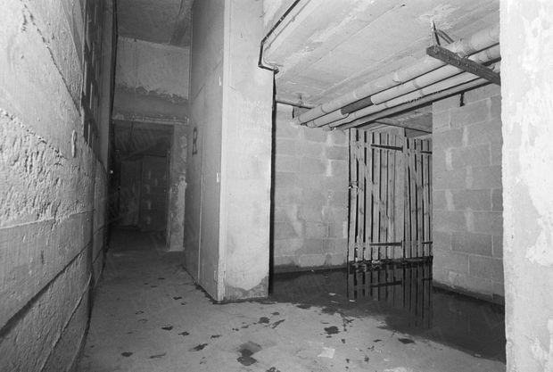 La cave où le corps sans vie de la petite Dominique Bessard a été retrouvé.