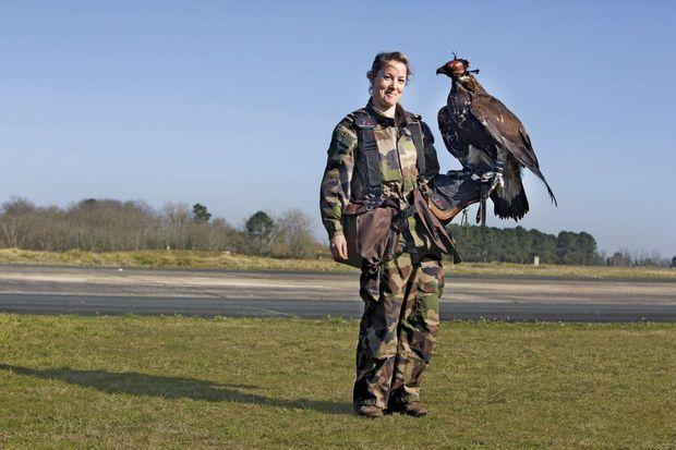 Une militaire, agent de la prévention animalière, dresse un des quatre aigles royaux.