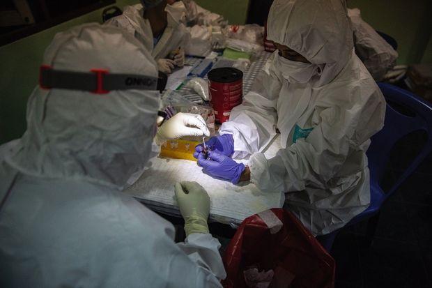 Extraction de salive de chauve-souris par des chercheurs de Bangkok. Dans un laboratoire de campagne installé près d'une grotte, en décembre 2020.