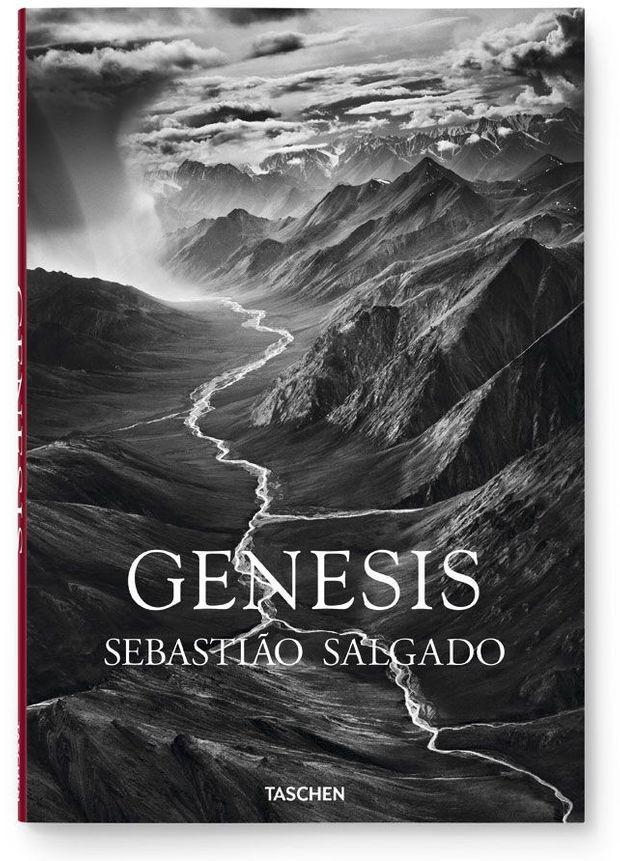 fo_salgado_genesis
