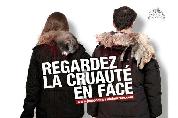 Campagne choc de la Fondation Brigitte Bardot