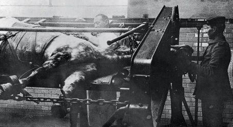 ce cheval de l'armée allemande est enchaîné et immobilisé pour ne pas ruer... Il doit subir une opération à vif.