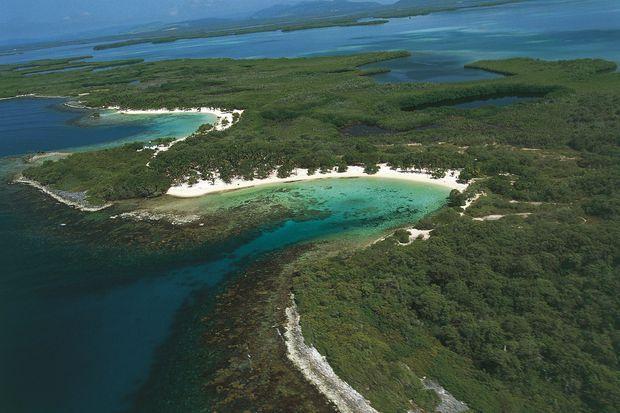 Vue de la mangrove du parc national de Morrocoy.