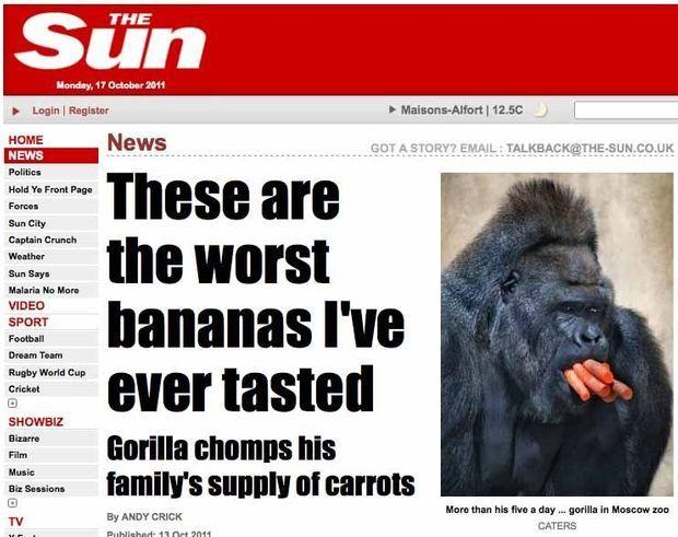 Gorille Carotte-