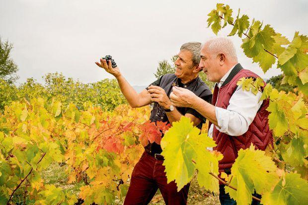 Homme de terroir. Octobre 2019, visite au domaine Dambrun, le vignoble vauclusien de Patrick Chêne, dont il possède des parts.