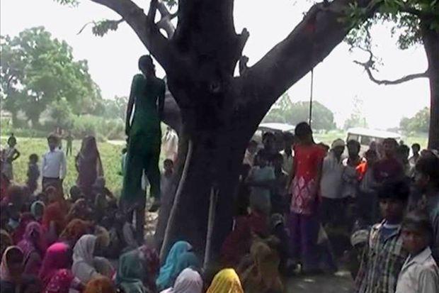 Les corps des victimes ont été retrouvés pendus à un arbre.