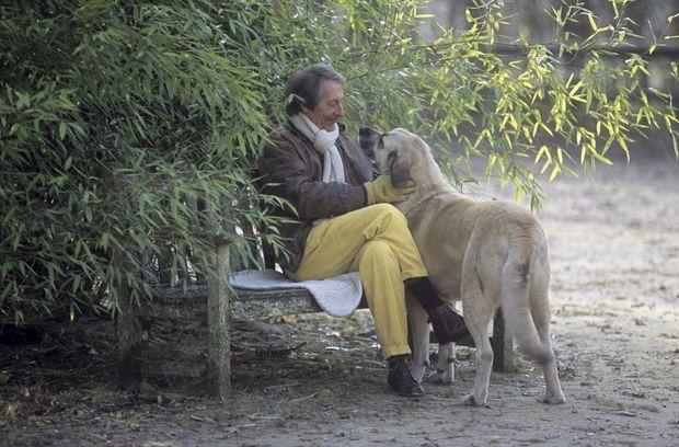« C'est l'une des premières sorties du convalescent. Son chien, un berger d'Anatolie, l'accompagne, comme il faisait durant les randonnées à cheval de l'acteur. » - Paris Match n°2694, 11 janvier 2001