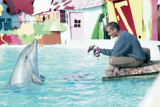 Joséphine, dauphin star du film, ici au Marineland d'Antibes. Elle meurt à l'âge de 38 ans en 2011.