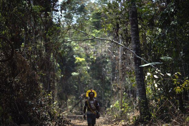 Kadjyre, chef d'une tribu kayapo, sur un chemin taillé illégalement dans une zone protégée de l'Amazonie brésilienne.