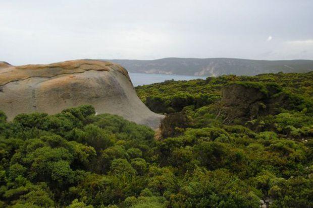 Kangaroo Island, en Australie, avant les incendies.