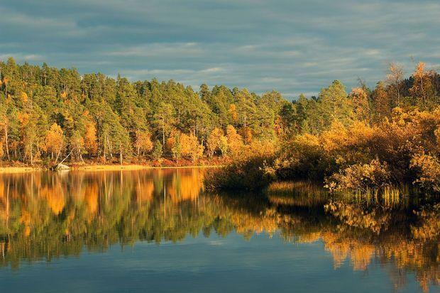 Laponie en automne