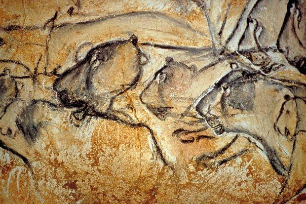 Ces lions en chasse sont représentés avec un incroyable souci du réalisme. Les crânes de certains fauves sont même dessinés de trois-quart alors que la plupart des animaux de l'art préhistorique sont montrés de profil.