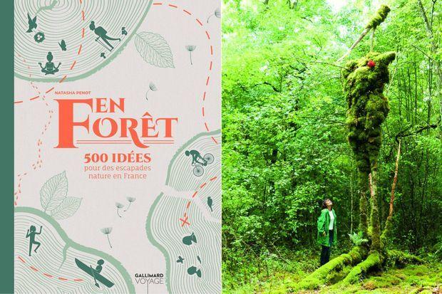 A droite, la forêt des géants verts.