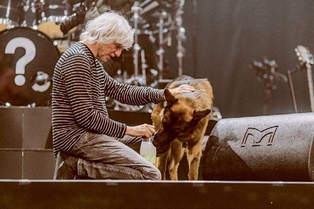 Louis Bertignac prend soin du chien de Jean-Louis.