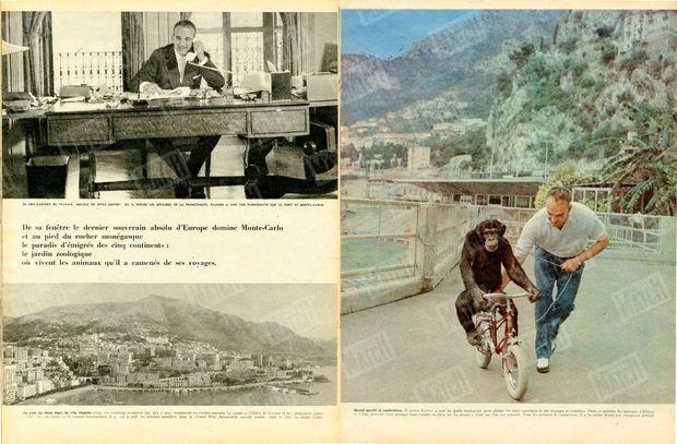 """""""De sa fenêtre le dernier souverain absolu d'Europe domine Monte-Carlo et au pied du rocher monégasque le paradis d'émigrés des cinq continents : le jardin zoologique où vivent les animaux qu'il a ramenés de ses voyages"""" - """"Grand sportif et explorateur, le prince Rainier a créé un jardin zoologique pour abriter les bites ramenées de ses voyages et croisières. Dans ce paradis, les animaux d'Afrique et d Asu peuvent vivre presque toute Tannée en plein air. Le prince y vient une fois par semaine. Tous les animaux le connaissent. Il a lui-même dresse son chimpanzé préfère."""" - Paris Match n°513, 7 février 1959."""