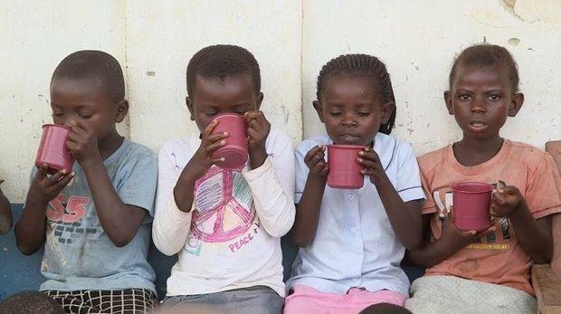 Dans la province du Maniema (RDC), distribution de tisanes aux enfants, en prévention du paludisme.