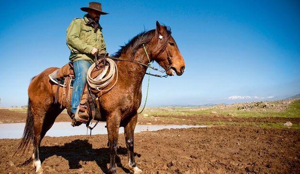 ouv-cowboy-