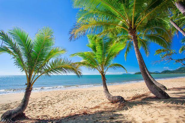 Palm-Cove,-Australia