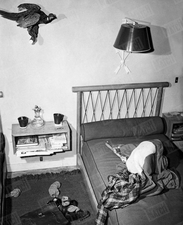 « Leur premier faisan à Rambouillet. Dans la chambre des petits-fils du Président, il règne un désordre particulièrement enfantin. Jean-Claude et Jean-Paul viennent de passer en coup de vent pour se mettre en tenue d'escrime. Au mur, le premier faisan tué par J.-Claude dans les tirés de Rambouillet. » - Paris Match n°1, 25 mars 1949