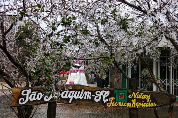 Piège de cristal. Coup de froid sur São Joaquim, dans le sud du Brésil. Cette ville montagnarde de l'hémisphère austral, aux hivers doux, vient de voir le mercure chuter subitement à –3 °C.