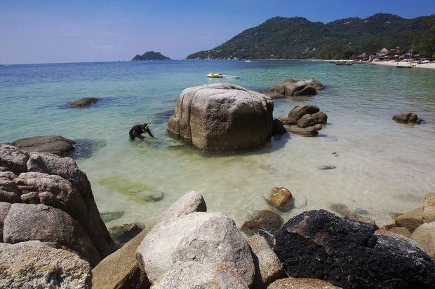 L'île paradisiaque de Koh Tao.
