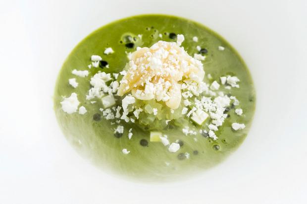 Salade de microalgues et de plancton et son émulsion de jus de salade à l'azote liquide