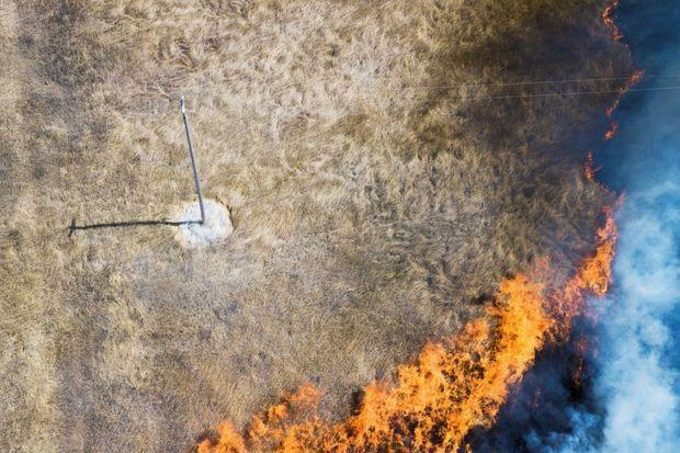 Pour protéger 10 mètres carrés d'herbes sèches, il faut 8 litres d'hydrogel.