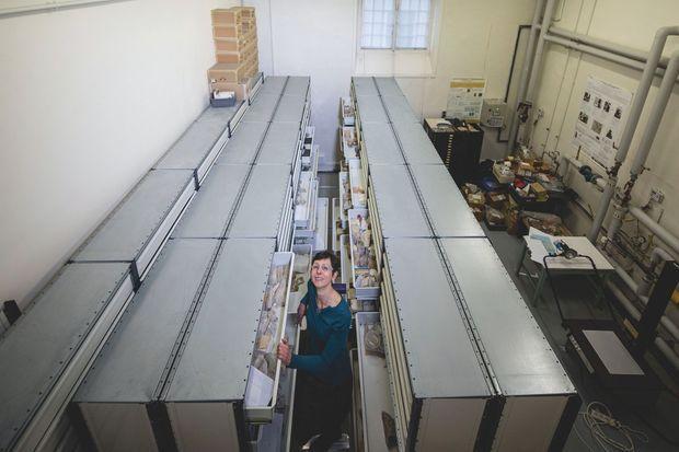 Lise Leroux dans la lithothèque du LRMH où sont répertoriés 6 000 échantillons de pierres.