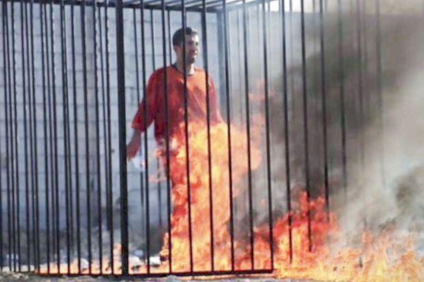 Maaz Al-Kassasbeh, 26 ans, enfermé dans une cage, arrosé de pétrôle et transformé en torche vivante début janvier.