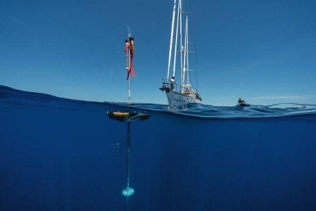Une triangulation par des hydrophones couvrant 10 km2 doit permettre de mieux renseigner sur la population des cétacés dans le sanctuaire de Pelagos.