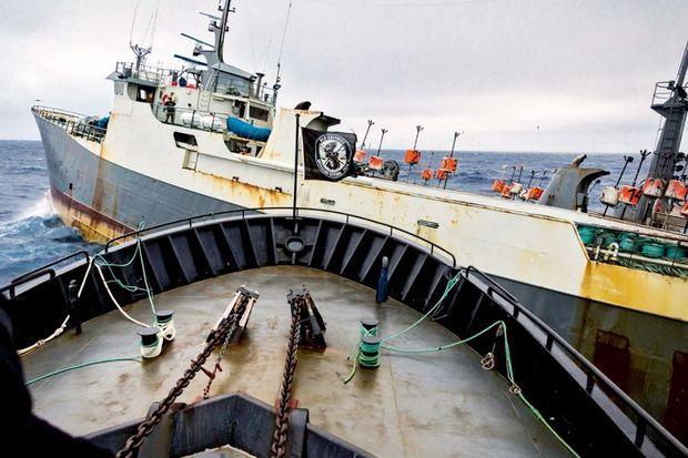 Le « Sam Simon » coupe la route du « Thunder », navire braconnier immatriculé au Nigeria, dans l'océan Indien, en mars 2015. La poursuite a commencé en Antarctique. Elle durera cent dix jours.