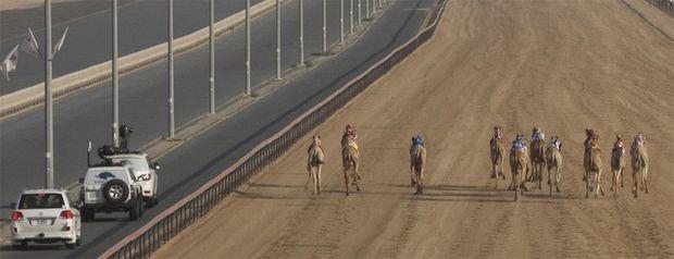 SC_CM_Camel_Race_19760 - copie-v2