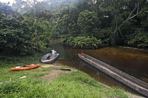 En barque sur la rivière Lekoli pour dénicher les éléphants de forêt.