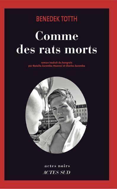 SC_couv_comme_des_rats_b