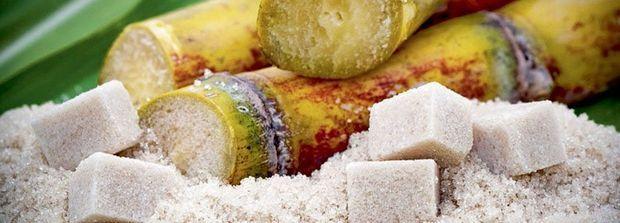 3 072 kilos de sucre pour faire 1 litre d'isobutène