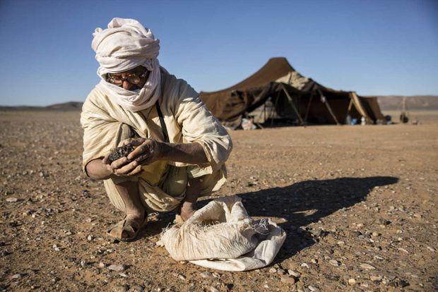 Nassim le berger a appris à reconnaître les pierres à fort potentiel.