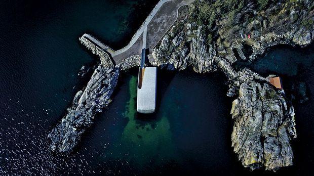 Comme un récif artificiel, le bâtiment accueillera au fil du temps la vie marine.