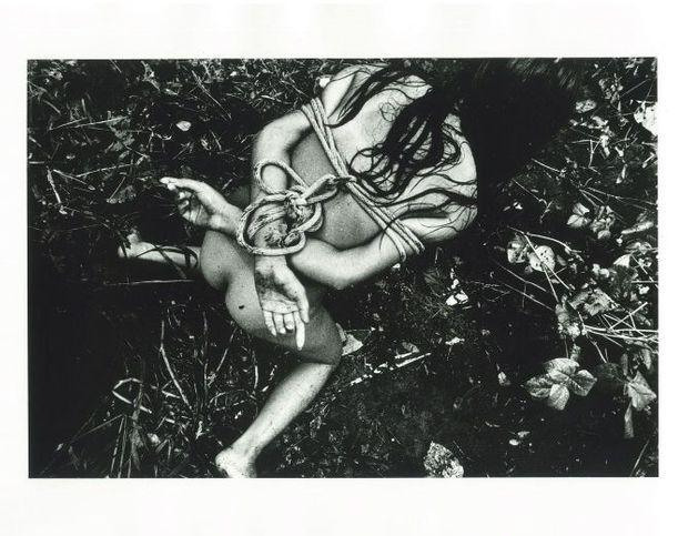 Mayfly, 1972