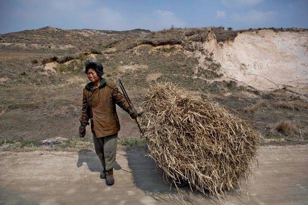 Dans les campagnes de Corée du Nord, aujourd'hui, comme hier, ni les paysans ni les ouvriers n'ont de machines, et les vieillards triment.