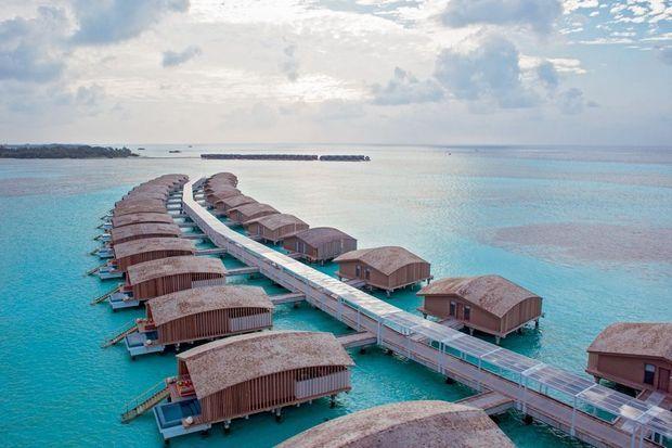 Finholu : une île écrin de 5 hectares entre nature et modernité.