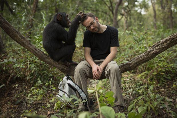 Séance d'épouillage pour Dan Kitwood, le photographe.