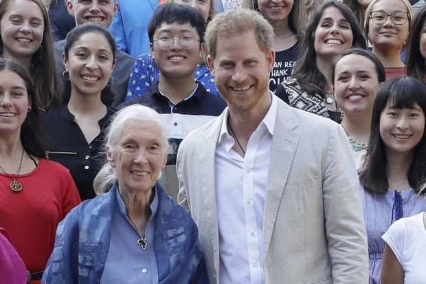 Le Dr. Jane Goodall et le prince Harry à Windsor en juillet 2019