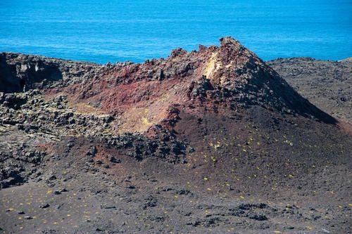 L'île volcanique de Surtsey (Islande) a développé des végétaux.