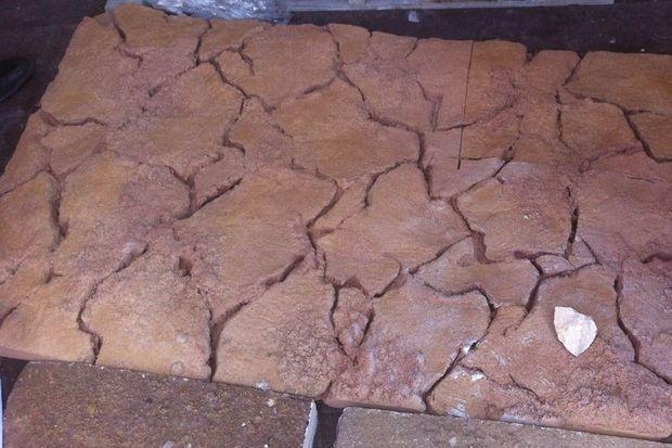 La préservation du sol originel de la grotte Chauvet a permis une reconstitution précise comme en témoigne cette plaque.