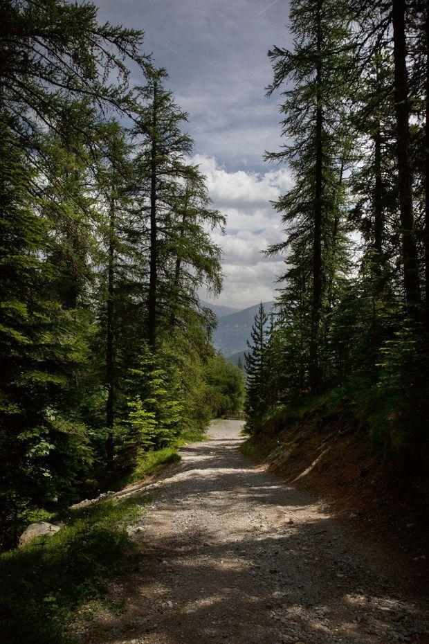 Sur le sentier de randonnée menant au pic de Morgon, qui domine le massif de Boscodon.