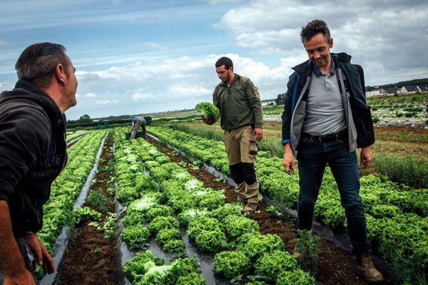 Thierry Baillet, agriculteur youtubeur, et son fils dans leurs champs bio.