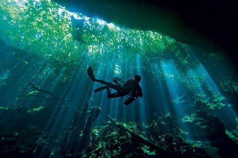 En réalité, le Yucatan n'est pas une péninsule, c'est un morceau de gruyère. Il y aurait plus de 1000 cénotes ou gouffres d'effondrement remplis d'eau douce.